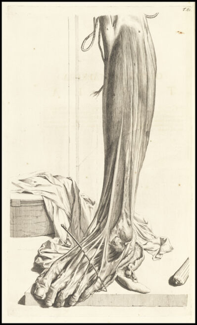Gerard de Lairesse, 'Octuagesimaprima tabula', 1685