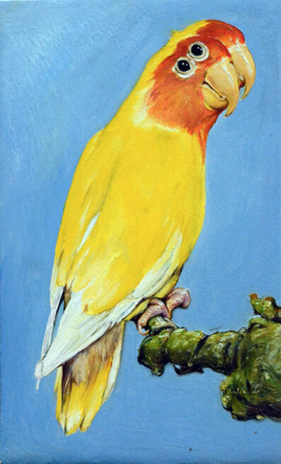 Léopold Rabus, '22 oiseau', 2020