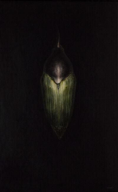 Amber Sena, 'Cataclysm', 2012
