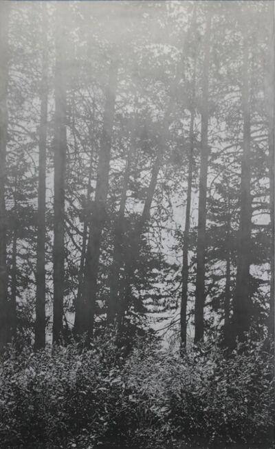 Mila Libman, 'Mist', 2018