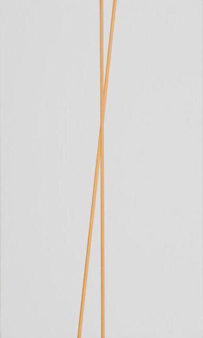 Valdirlei Dias Nunes, 'Sem Título [Untitled]', 2011