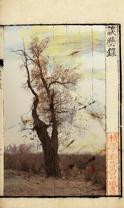 Wenjun Fu, 'A Wind from Yesterday No.2', 2016