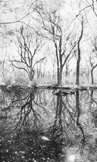 Jeff Chien-Hsing Liao, 'Rain Water', 2015