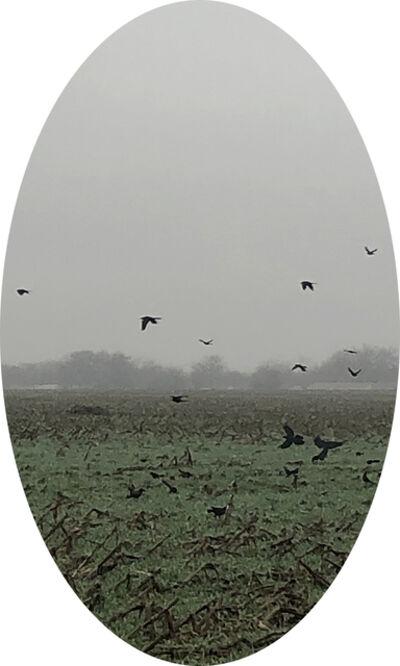 Letitia Huckaby, 'A Cloister of Blackbirds', 2020