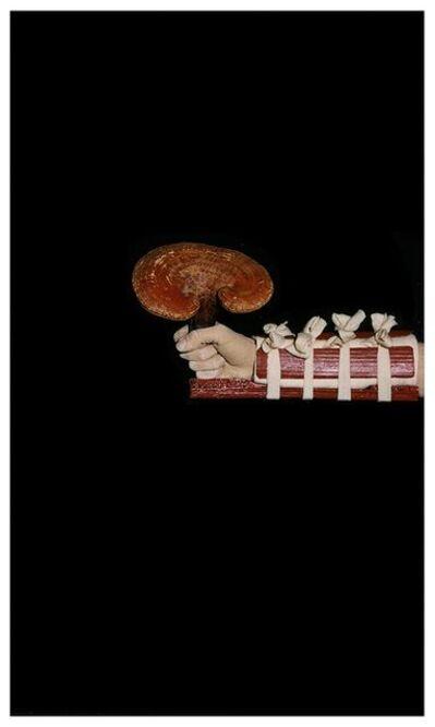 Farrel & Parkin, 'Medicinal Lingzhi Fungus ', 2000