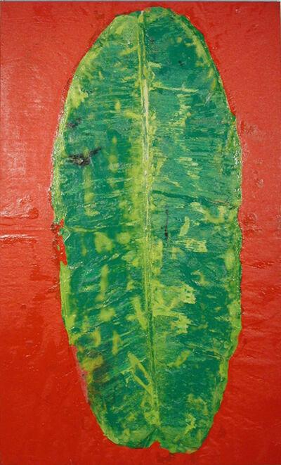 Darío Basso, 'Vulva vegetal II', 1999
