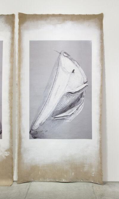 Linarejos Moreno, 'Art Forms in Mechanism XXII', 2016