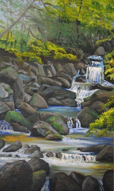 Linda Lynton, 'In the Wilderness: Hidden Falls', 2019