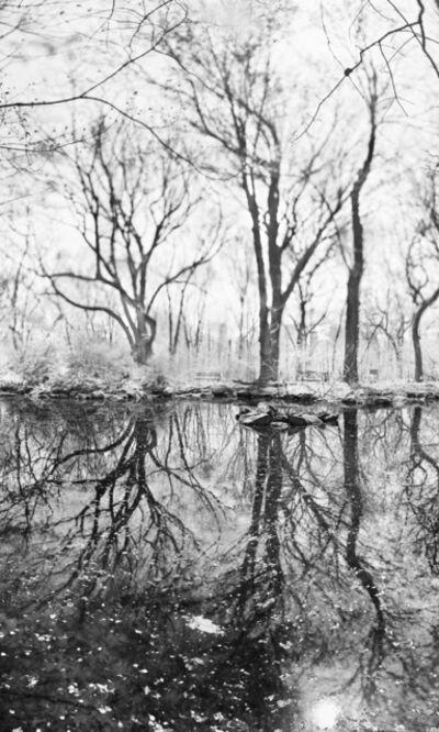 Jeff Chien-Hsing Liao, 'Rain Water', 2017