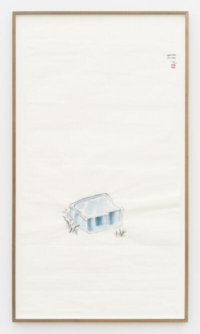 Evelyn Taocheng Wang, 'Plastic Basin and Grass', 2021