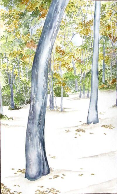 Scott Winterrowd, 'Cross Timbers, Eagle Mountain', 2014