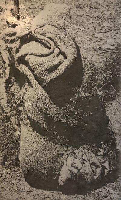 Rut Blees Luxemburg, 'SilverForest (Concrete Sack)', 2016