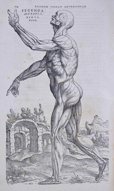 Andreas Vesalius, 'De humani corporis fabrica libri septem.', June-1543.