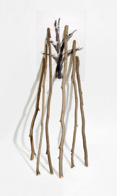 Giuseppe Penone, 'La velocità del vegetale – Il ripetersi della scultura (6 Biforcazioni)', 1985