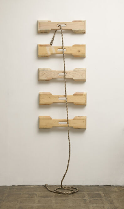 Claudia Parducci, 'Rope, Ladder', 2018