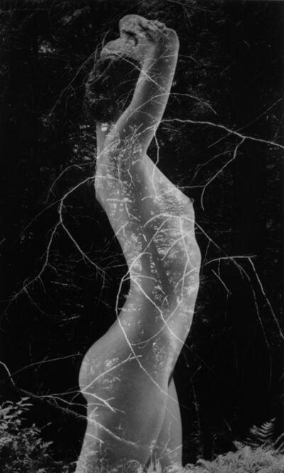 Ruth Bernhard, 'Symbiosis ', 1971