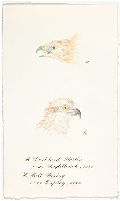 Cynthia Mulcahy, 'Birds of Prey (After J.J.) (from the War Garden Series)', 2017