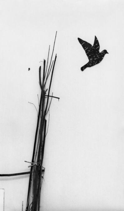 Lothar Baumgarten, 'Kosmos', 1969