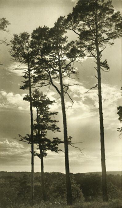 Edith Gerin, 'Dans la Malmontague (Forest of Fontainebleau)', 1950s