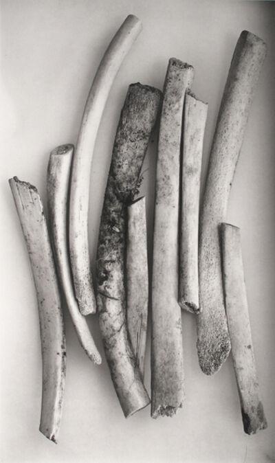 Irving Penn, 'Bird Bones (Sweden), New York', 1980