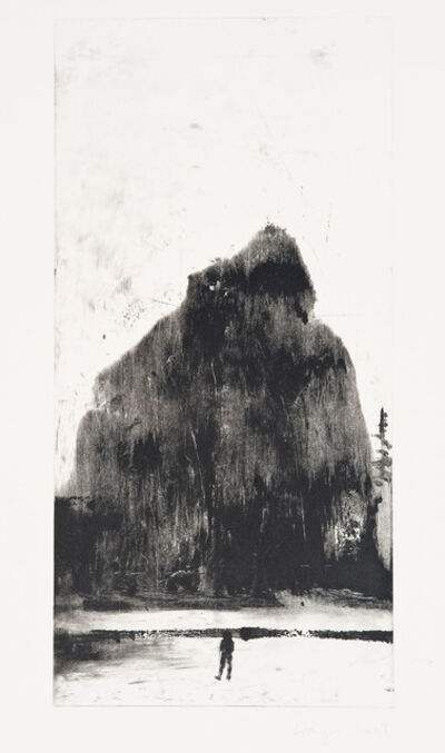 Stephen Hayes, 'Oakland Suite: Wild Beauty 6', 2009
