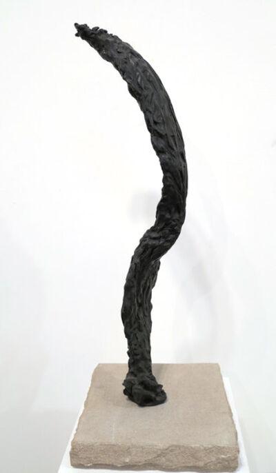 Bryan Hunt, 'Study for Flume I', 2005-2006