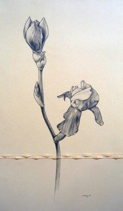 Rusty Scruby, 'Yellow Iris- Cut Flower', 2004