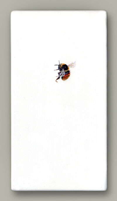 Hazel Mountford, 'Bilberry Bee', 2020