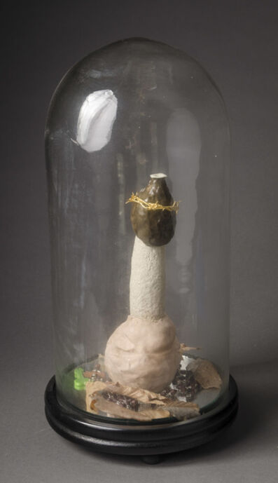 Arnix Wilnoudt, 'Glorification I, The Stinkhorn', 2011