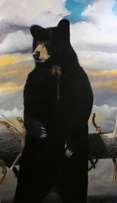 Robert McCauley, 'The Great North American Black Bear Census Project I', 2019
