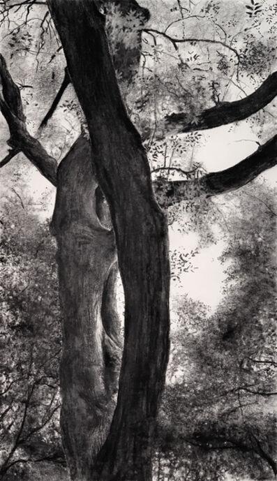 Jeffrey Blondes, '20-08D Bois de Mametz 03h33m00s', 2020