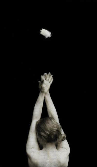 Mary Daniel Hobson, 'Regeneration #3', 2016