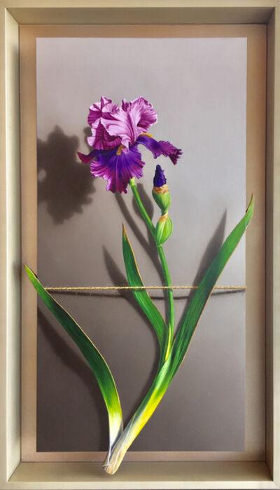 Otto Duecker, 'Bearded Iris', 2019