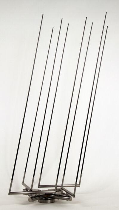 Anne Lilly, 'Disparate de Tontos', 2014