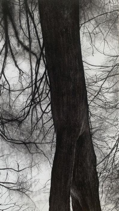 Jeffrey Blondes, '20-14D Bois de Mametz 21h00m00s', 2020
