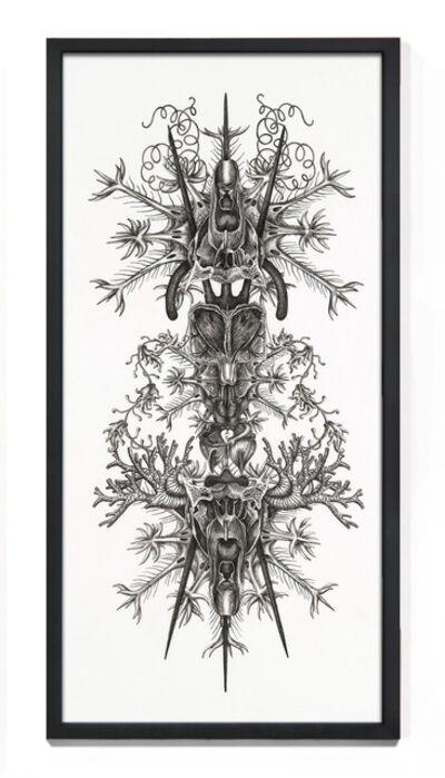 Angela Su, 'Chimeric Antibodies 4', 2011