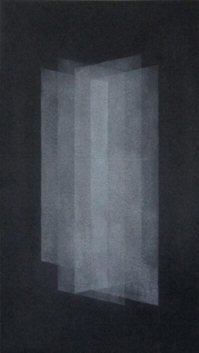 Nicolas Feldmeyer, 'Lames II', 2015