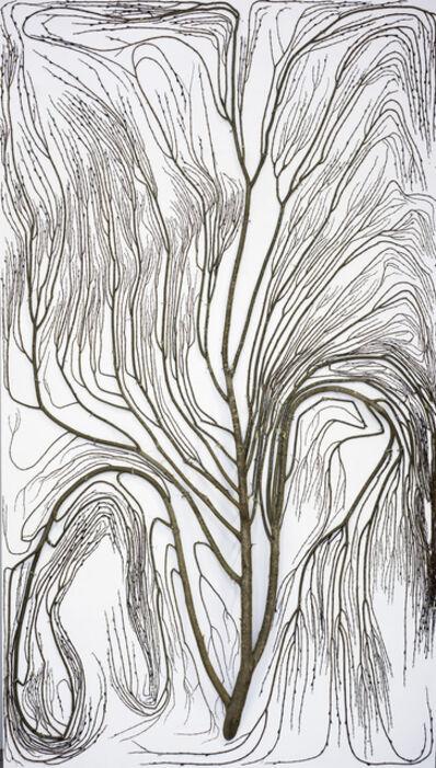 Antti Laitinen, '2D Tree (1)', 2017