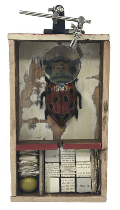 Robin Howard, 'Bug Box III', 2020