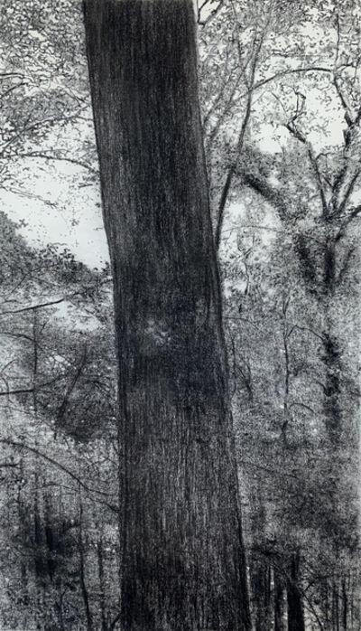 Jeffrey Blondes, '20-07D Bois de Mametz 01h50m00s', 2020