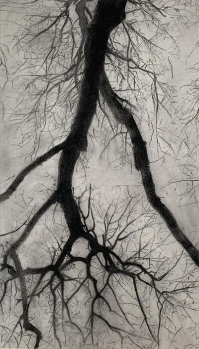 Jeffrey Blondes, '20-11D Bois de Mametz 17h22m00s', 2020