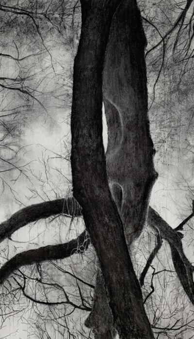 Jeffrey Blondes, '20-13D Bois de Mametz 19h56m00s', 2020