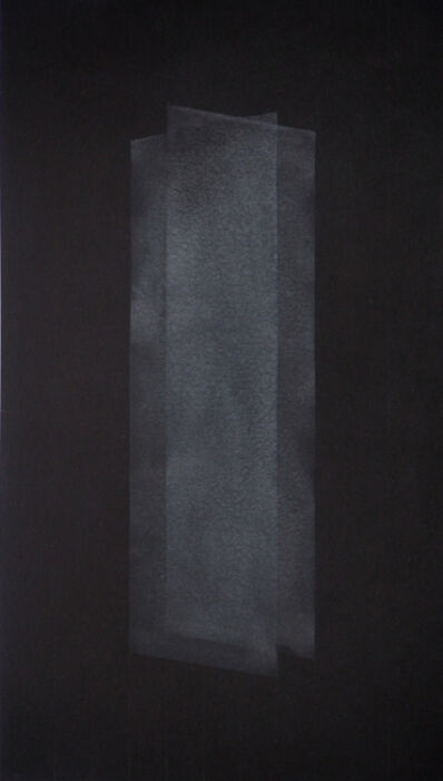 Nicolas Feldmeyer, 'Lames III', 2015