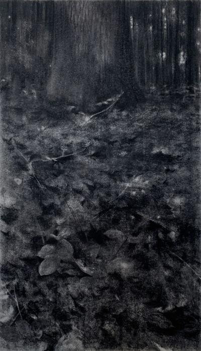 Jeffrey Blondes, '20-06D Bois de Mametz 00h17m00s', 2020