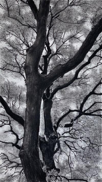 Jeffrey Blondes, '20-09D Bois de Mametz 05h02m00s', 2020