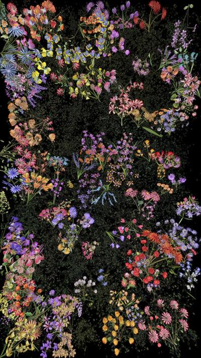 Jennifer Steinkamp, 'Botanic 4, Still Frame 12', 2016