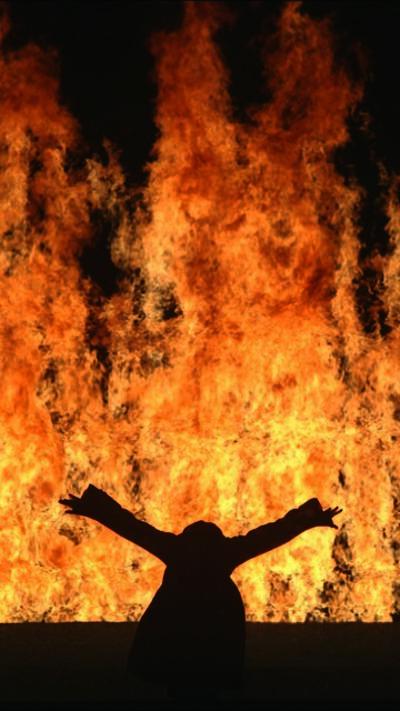 Bill Viola, ' Fire Woman', 2005
