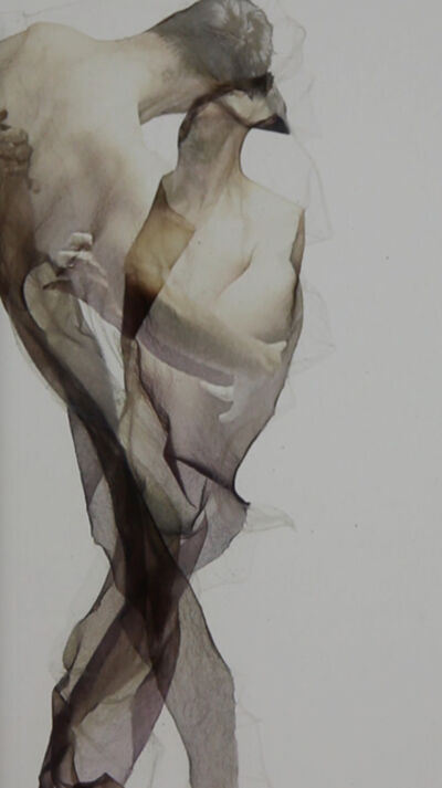 Lucas Davidson, 'Body Emulsion Semblance', 2016