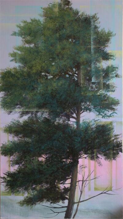 Peter Hoffer, 'Russian Pine', 2015