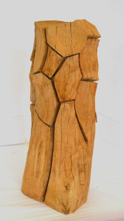 David Nash, 'Armour Column', 2012